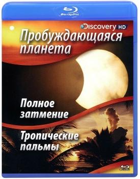 Пробуждающаяся планета: Полное затмение / Тропические пальмы