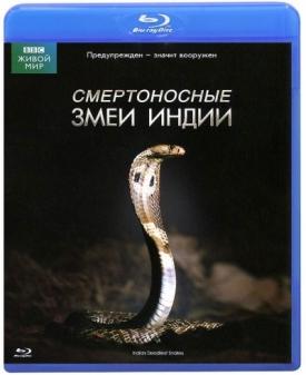 Смертоносные змеи Индии