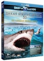 Дикая Южная Африка: По следам белых акул. 3D