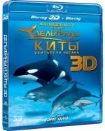Дельфины и киты: обитатели океана 3D